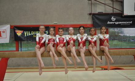 Artistique – Manche qualificative aux championnats Suisses – Langenthal – Distinction pour Liv et Géraldine